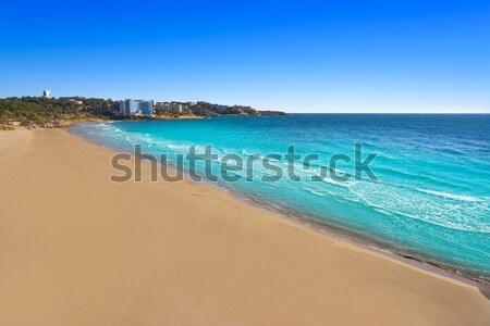 Las Americas Beach Adeje coast Beach in Tenerife Stock photo © lunamarina