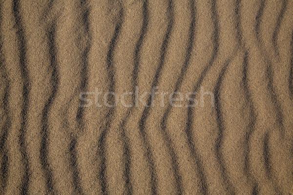 песчаный пляж текстуры Калифорния природы фон лет Сток-фото © lunamarina