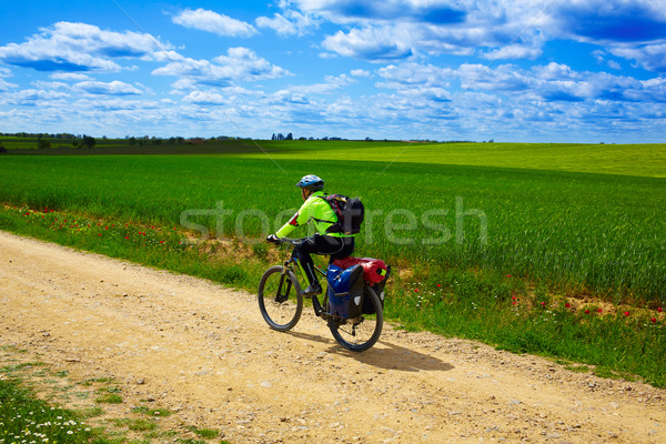 Biker on The Way of Saint James in Castilla Leon Stock photo © lunamarina