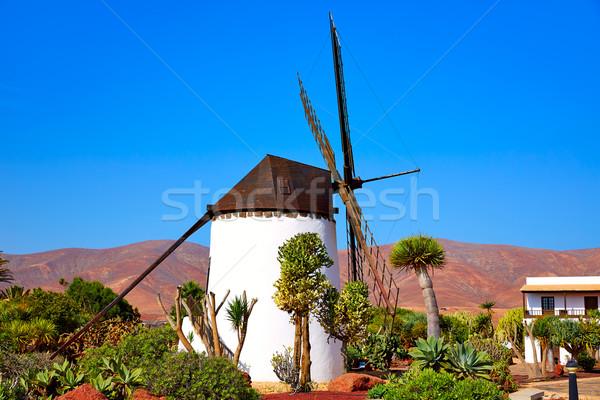 Moinho de vento canárias Espanha praia edifício sol Foto stock © lunamarina