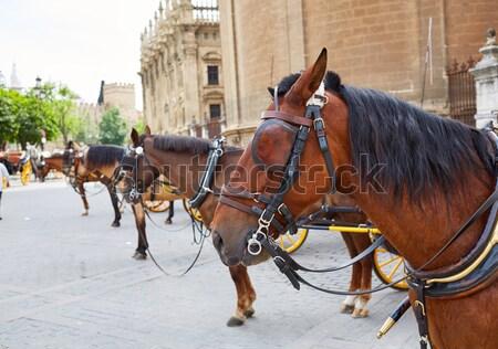 Seville Sevilla Plaza de Espana horse Andalusia Stock photo © lunamarina
