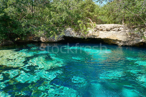 Cenote in Riviera Maya of Mayan Mexico Stock photo © lunamarina