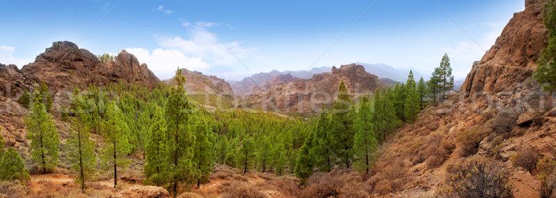 Gran Canaria Tejeda La culata mountains Stock photo © lunamarina