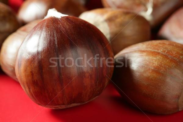 Chestnuts macro over red studio background Stock photo © lunamarina