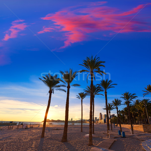 Benidorm Alicante playa de Poniente beach sunset in Spain Stock photo © lunamarina