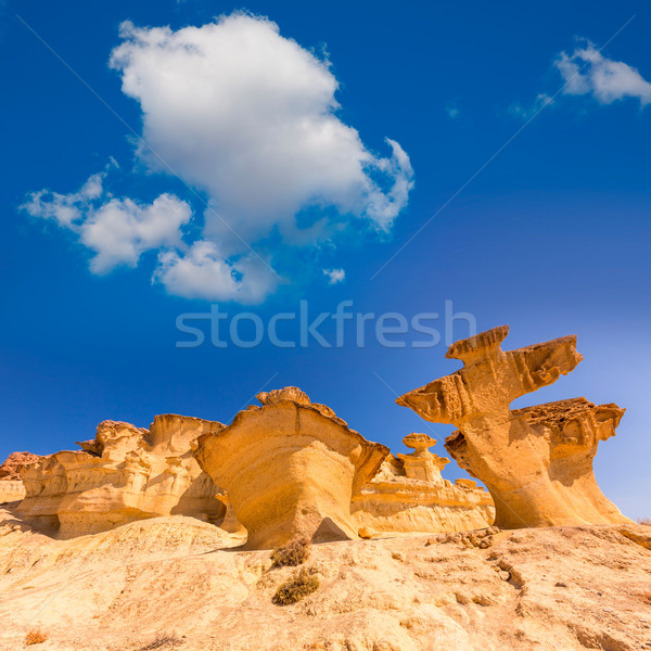 Bolnuevo Mazarron eroded sandstones Murcia Stock photo © lunamarina