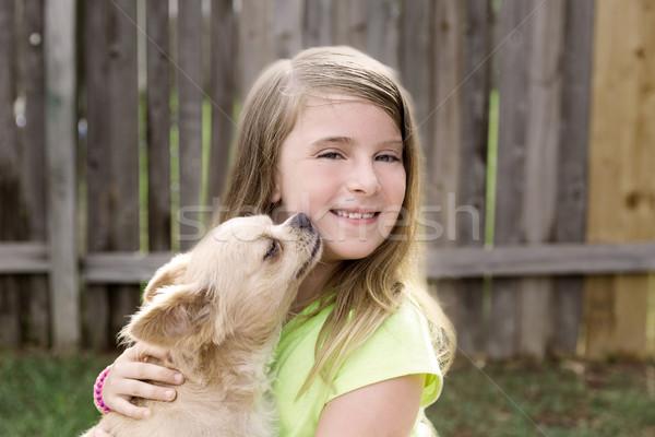 Foto stock: Loiro · criança · menina · animal · de · estimação · cão · jogar