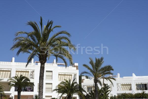 mediterranean white houses palm trees blue sky Stock photo © lunamarina
