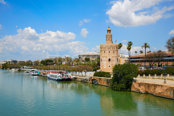 Seville Torre del Oro tower in Sevilla Andalusia Stock photo © lunamarina