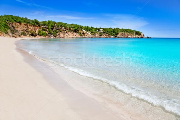 Cala Llenya in Ibiza with turquoise water in Balearic Stock photo © lunamarina