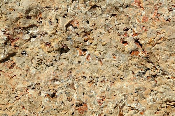 Texture calcaire pierre surface naturelles résumé Photo stock © lunamarina