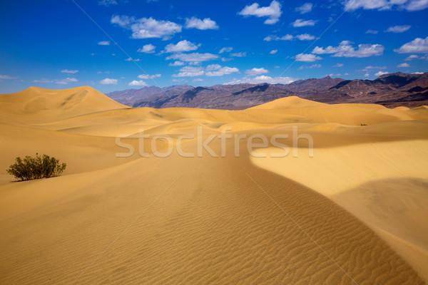 Sivatag halál völgy park Kalifornia természet Stock fotó © lunamarina