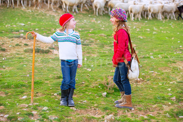 Kid girl shepherdess sisters happy with flock of sheep and stick Stock photo © lunamarina