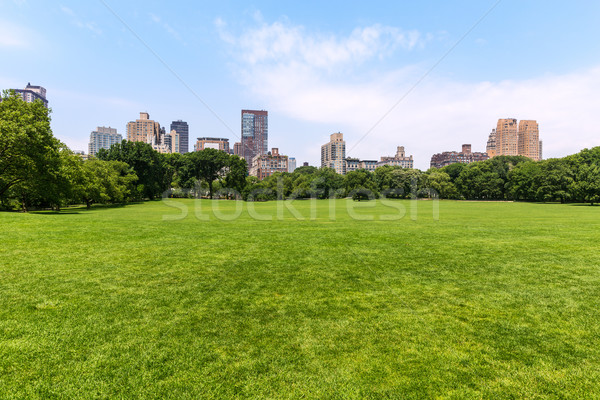 Central Park Sheep meadow Manhattan New York Stock photo © lunamarina