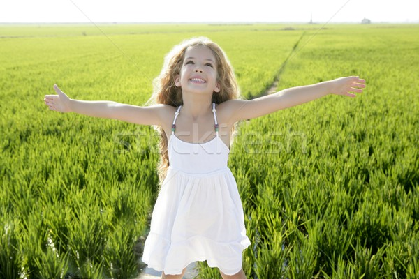 open arms little happy girl green meadow field Stock photo © lunamarina
