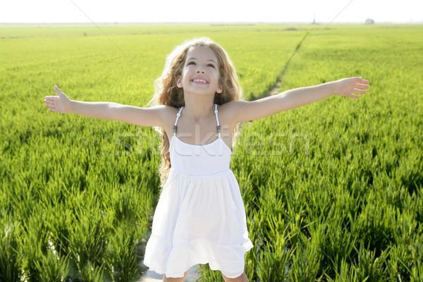 Otwarte broni mały happy girl zielone łące Zdjęcia stock © lunamarina