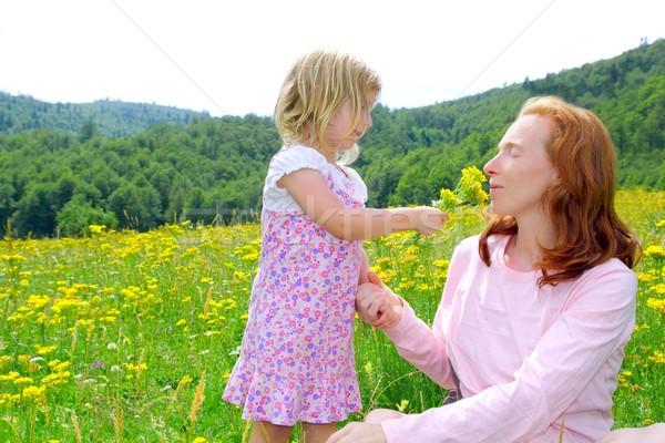 Stockfoto: Dochter · moeder · spelen · bloemen · weide · lentebloemen