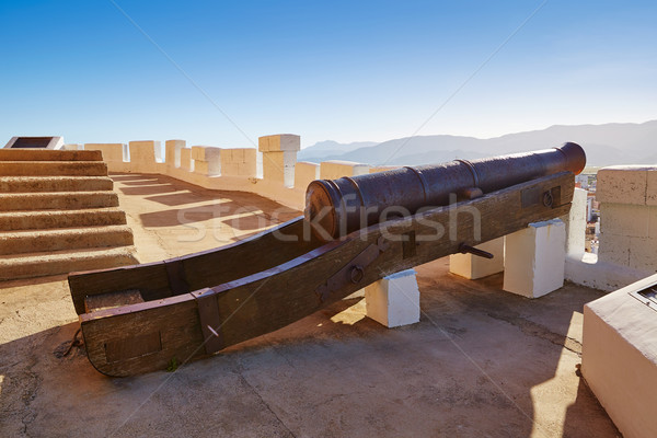 Cullera cannon in Torre de la Reina Mora tower Stock photo © lunamarina