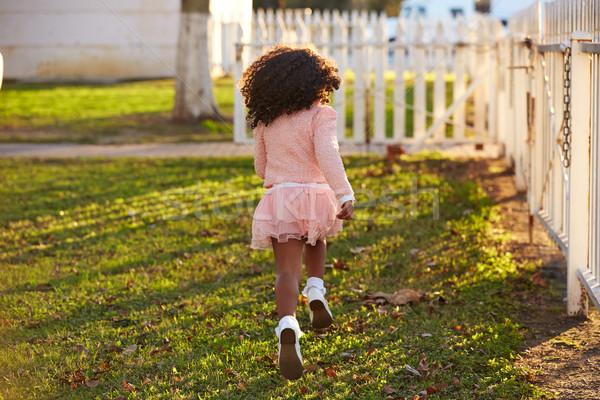 kid girl toddler playing running in park rear view Stock photo © lunamarina