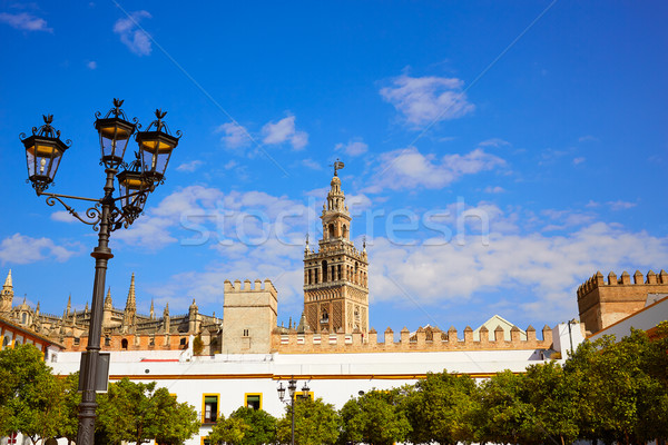 Seville Giralda tower of Sevilla Andalusia Spain Stock photo © lunamarina