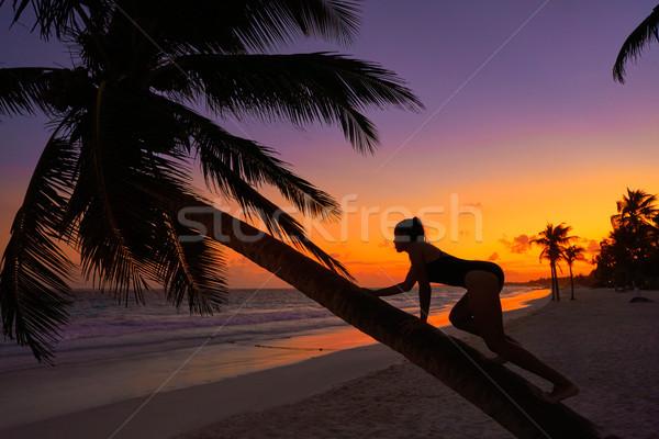Girl silhouette palm tree Caribbean sunset Stock photo © lunamarina