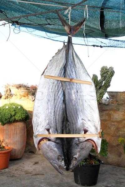 bonito tuna salted dried fish Mediteraranean sarda Stock photo © lunamarina