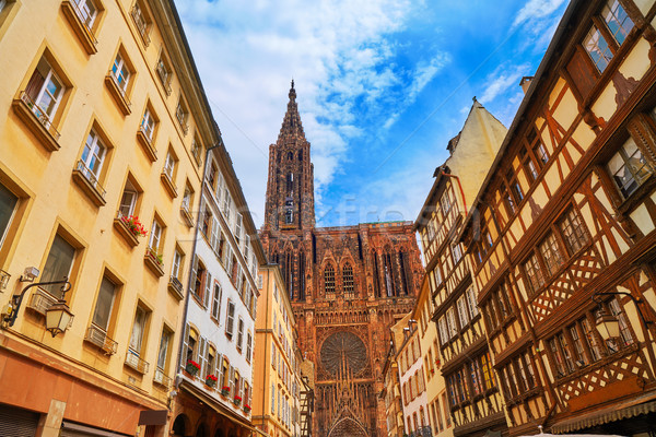 Notre Dame Cathedral in Strasbourg France Stock photo © lunamarina