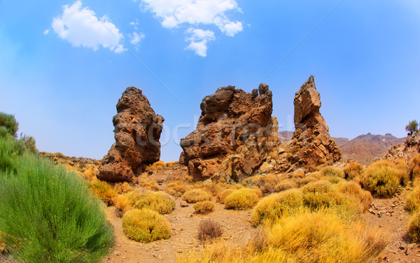 Canary islands in Tenerife Teide National Park  Stock photo © lunamarina