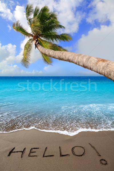 Stock photo: Brown sand beach with written word Hello