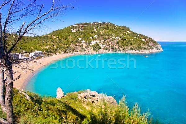 острове морем фон деревья горные Сток-фото © lunamarina