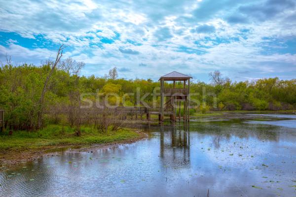白 湖 公園 テキサス州 ヒューストン 水 ストックフォト © lunamarina