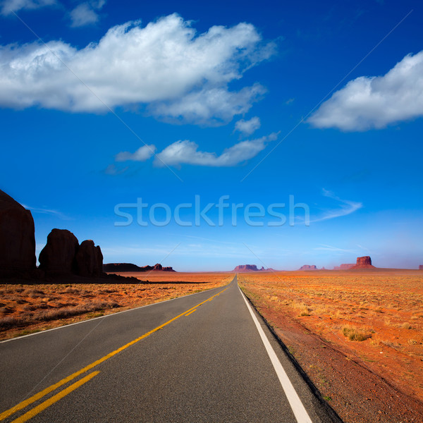 アリゾナ州 風光明媚な 道路 谷 公園 空 ストックフォト © lunamarina