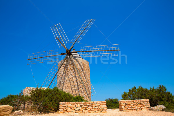 Windmill ветер мельница Vintage кирпичная кладка древесины Сток-фото © lunamarina