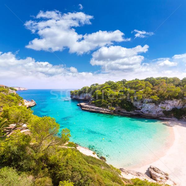 Strand majorca eiland Spanje natuur landschap Stockfoto © lunamarina