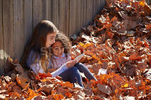 Photo stock: Kid · jouer · filles