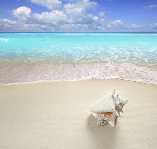 beach sand pearl necklace shell summer vacation Stock photo © lunamarina