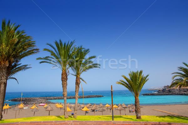 Adeje coast Las americas beach in south Tenerife Stock photo © lunamarina