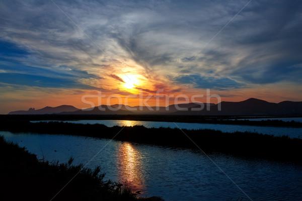 Ibiza ses Salines saltworks at sunset in Sant Josep Stock photo © lunamarina