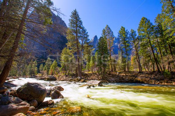Yosemite national park rivier Californië voorjaar USA hemel Stockfoto © lunamarina