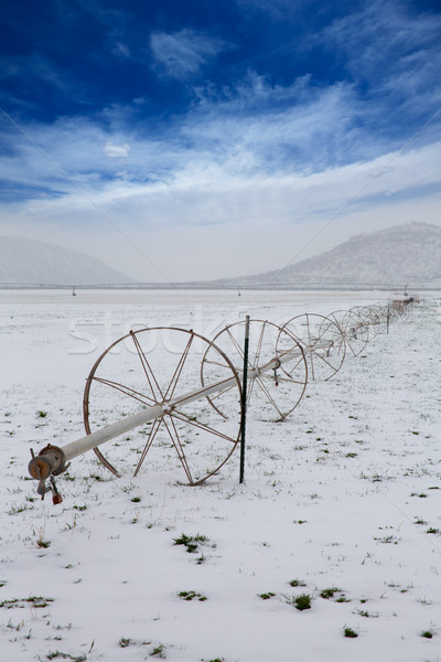 Cereal fields with irrigation wheels with snow in Nevada Stock photo © lunamarina