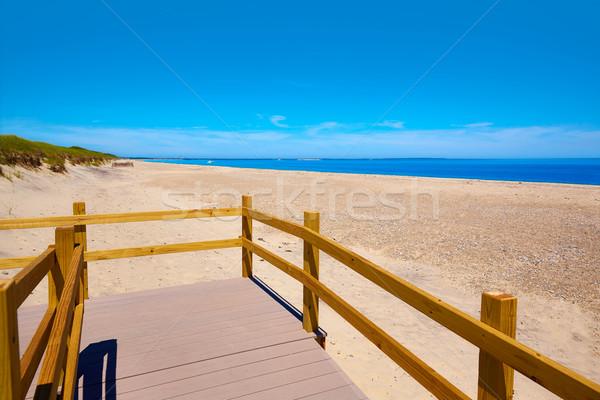 Cape Cod homokos nyak tengerpart Massachusetts USA Stock fotó © lunamarina
