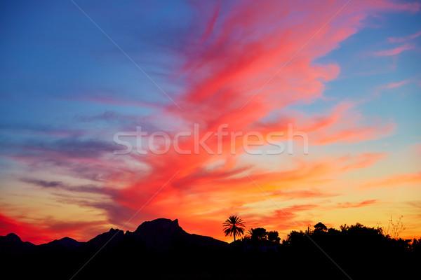 Naplemente égbolt pálmafák hegyek tengerpart nap Stock fotó © lunamarina