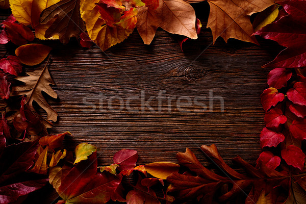 Autumn fall frame golden red leaves on wood Stock photo © lunamarina