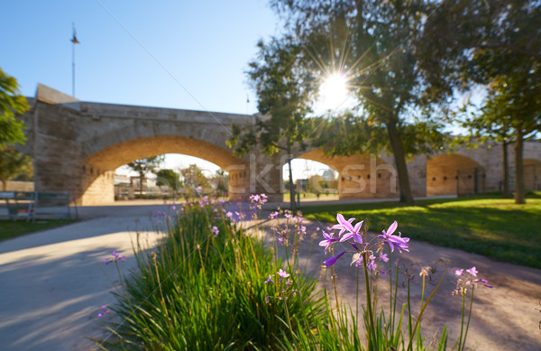 Serrano brug Valencia park Spanje lentebloemen Stockfoto © lunamarina