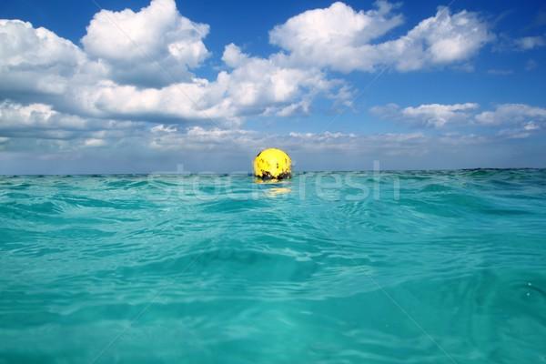Boa giallo tropicali Caraibi mare Foto d'archivio © lunamarina