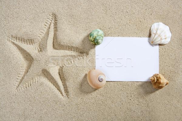 Photo stock: Papier · vierge · plage · de · sable · starfish · pinte · obus · été