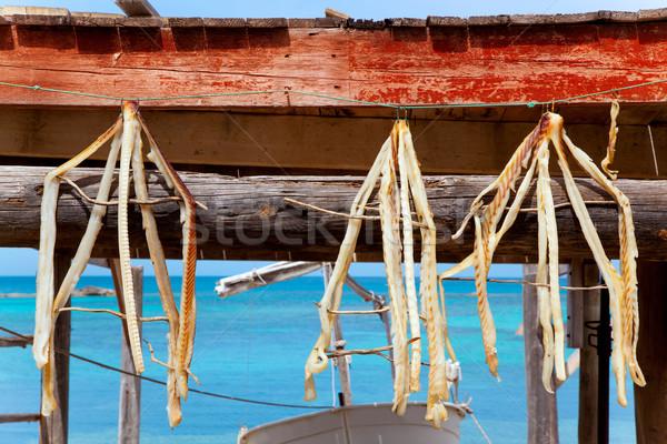 Séché poissons typique alimentaire plage Photo stock © lunamarina
