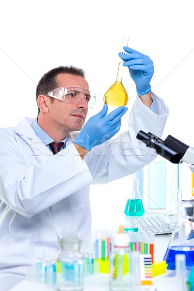 Stok fotoğraf: Laboratuvar · bilim · adamı · çalışma · laboratuvar · test