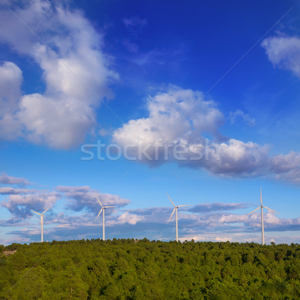 windmills green electric energy in pine mountain blue sky Stock photo © lunamarina