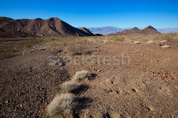 死 谷 公園 カリフォルニア コークスクリュー ピーク ストックフォト © lunamarina